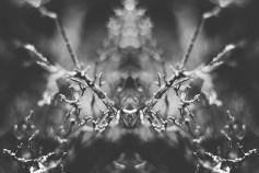 rorschachlandscapes-5