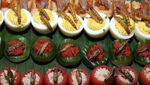 eat to live_wevux_elena locatelli (1)