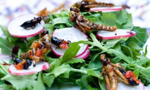 eat to live_wevux_elena locatelli (3)
