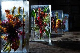icedflowers
