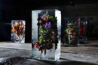 icedflowers2