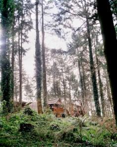 2 -Demon's house