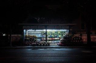 domus-07-fusco-fiori-24h