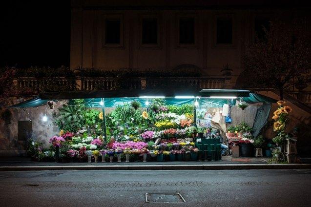 domus-11-fusco-fiori-24h