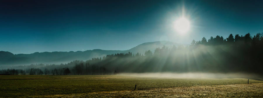 Thrilling-and-Mysterious-Pictures-of-Slovenian-Forests9-900x338