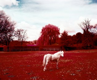 The Village. Photographs on Infrared colour film of Englands most haunted village.