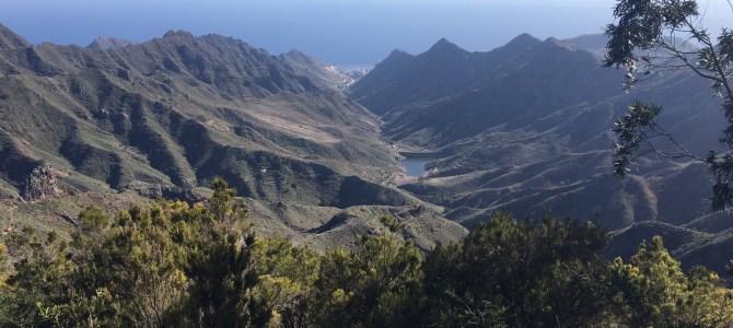 Punta del Hidalgo til Santa Cruz – tværs over øen