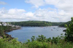 View from St Catherine's Castle Fowey