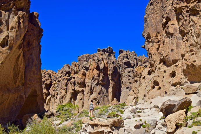 mojave-national-preserve-california-5