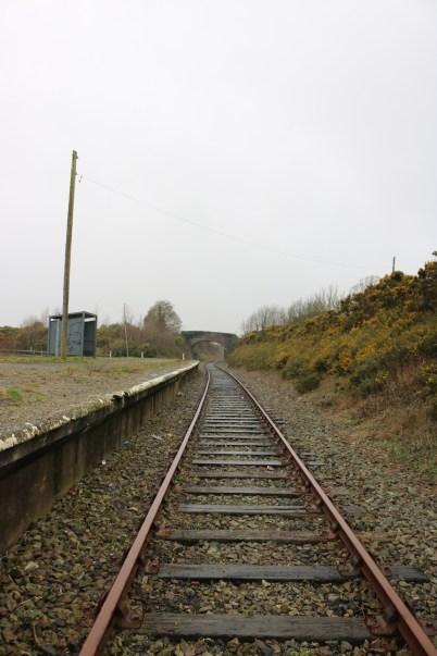Ballycullane Railway Station 2017-02-22 08.45.16 (12)