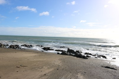 Ballytrent Beach 2017-02-28 10.06.43 (18)