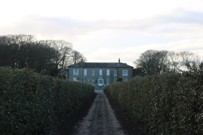 Ballytrent House 2017-03-02 16.15.31 (49)