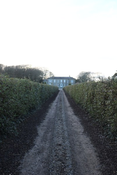 Ballytrent House 2017-03-02 16.15.31 (51)