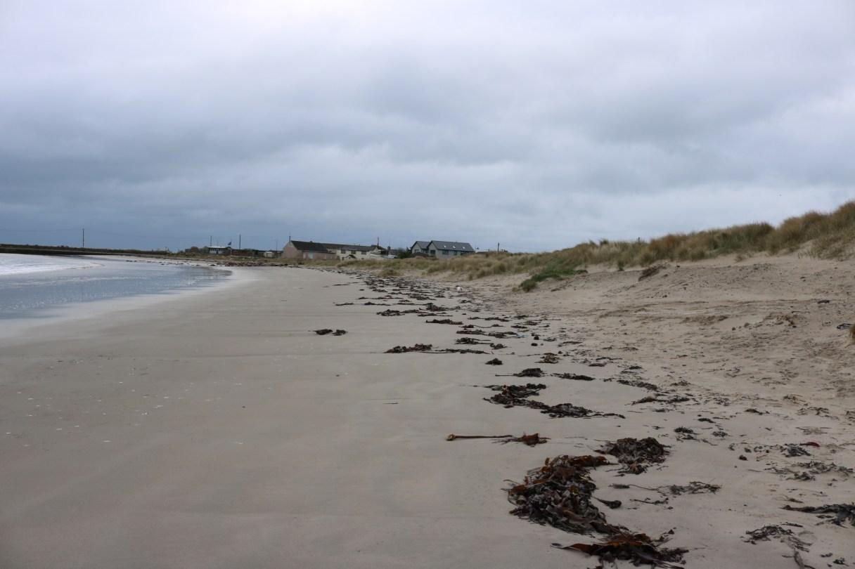 Carne Beach 2017-02-28 09.54.12 (8)