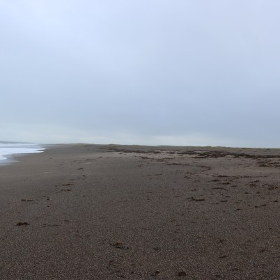 Carnsore Point Beach 2017-02-28 09.00.18 (5)