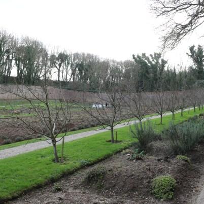 Colclough Gardens, Tintern Abbey 2017-02-21 14.58.35 (13)