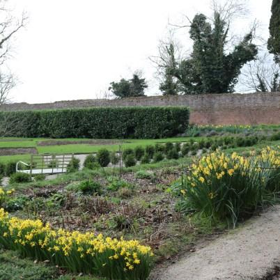Colclough Gardens, Tintern Abbey 2017-02-21 14.58.35 (34)