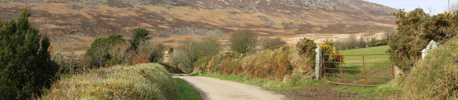 Corrageen, Blackstairs Mountains
