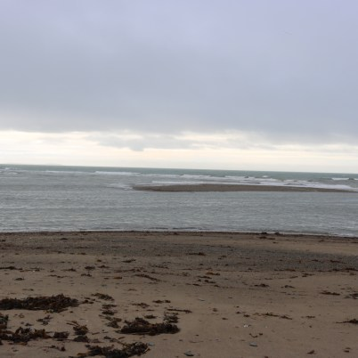 Cullenstown Strand 2017-02-22 11.16.21 (10)