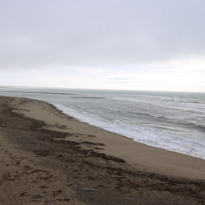 Cullenstown Strand 2017-02-22 11.16.21 (14)