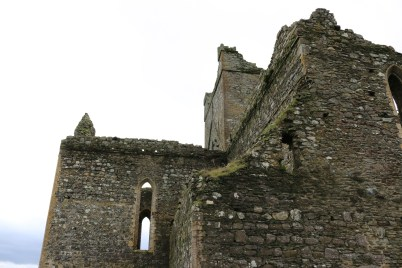 Dunbrody Abbey, Campile 2017-02-20 13.56.06 (6)