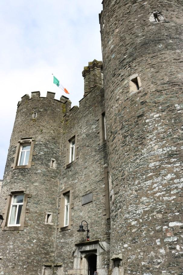 Enniscorthy Castle_2014-01-29 (12)