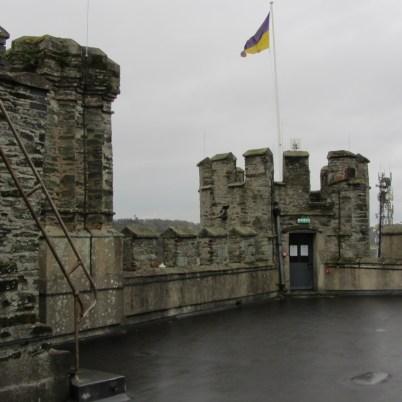 Enniscorthy Castle_2014-01-29 (7)