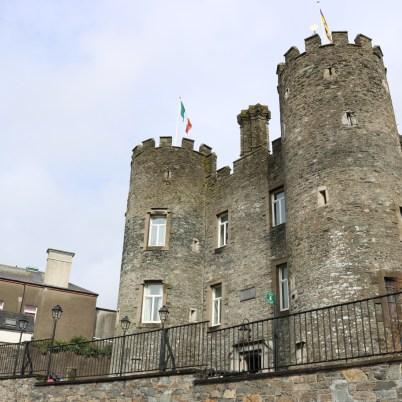Enniscorthy Castle_2014-01-29 (8)
