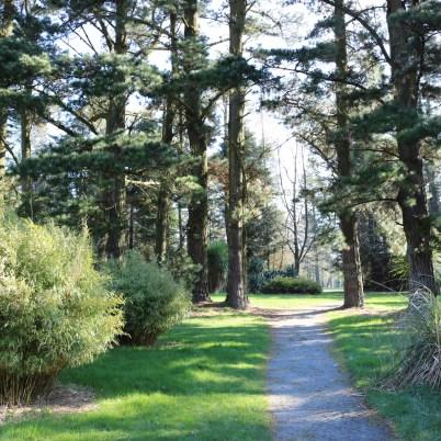 JFK Arboretum New Ross 2017-03-27 09.12.56 (19)