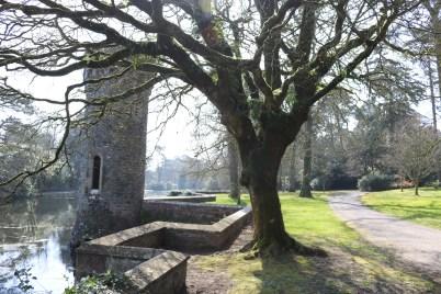 Johnstown Castle Gardens 2017-03-27 11.06.06 (16)