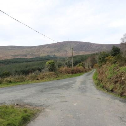 Mount Leinster Ballycrystal Blackstairs Mountains 2017-03-09 (1)
