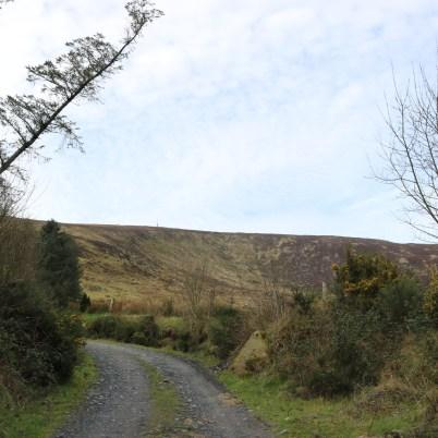 Mount Leinster Ballycrystal Blackstairs Mountains 2017-03-09 (5)