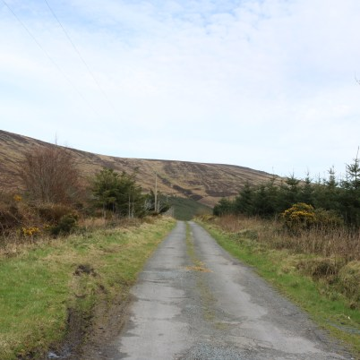 Mount Leinster Ballycrystal Blackstairs Mountains 2017-03-09 (8)
