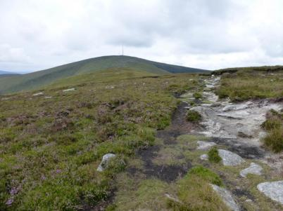 MountLeinster (11)