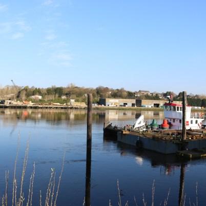 New Ross Port 2017-03-27 07.49.39 (16)
