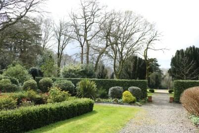 Newtownbarry Gardens Bunclody 2017-03-28 13.07.02 (21)