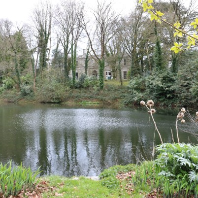 Newtownbarry Gardens Bunclody 2017-03-28 13.07.02 (4)