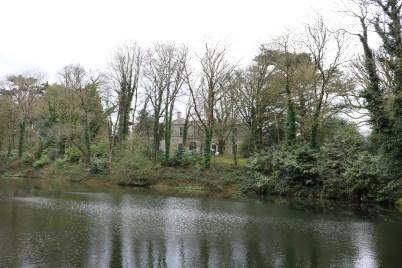 Newtownbarry Gardens Bunclody 2017-03-28 13.07.02 (5)
