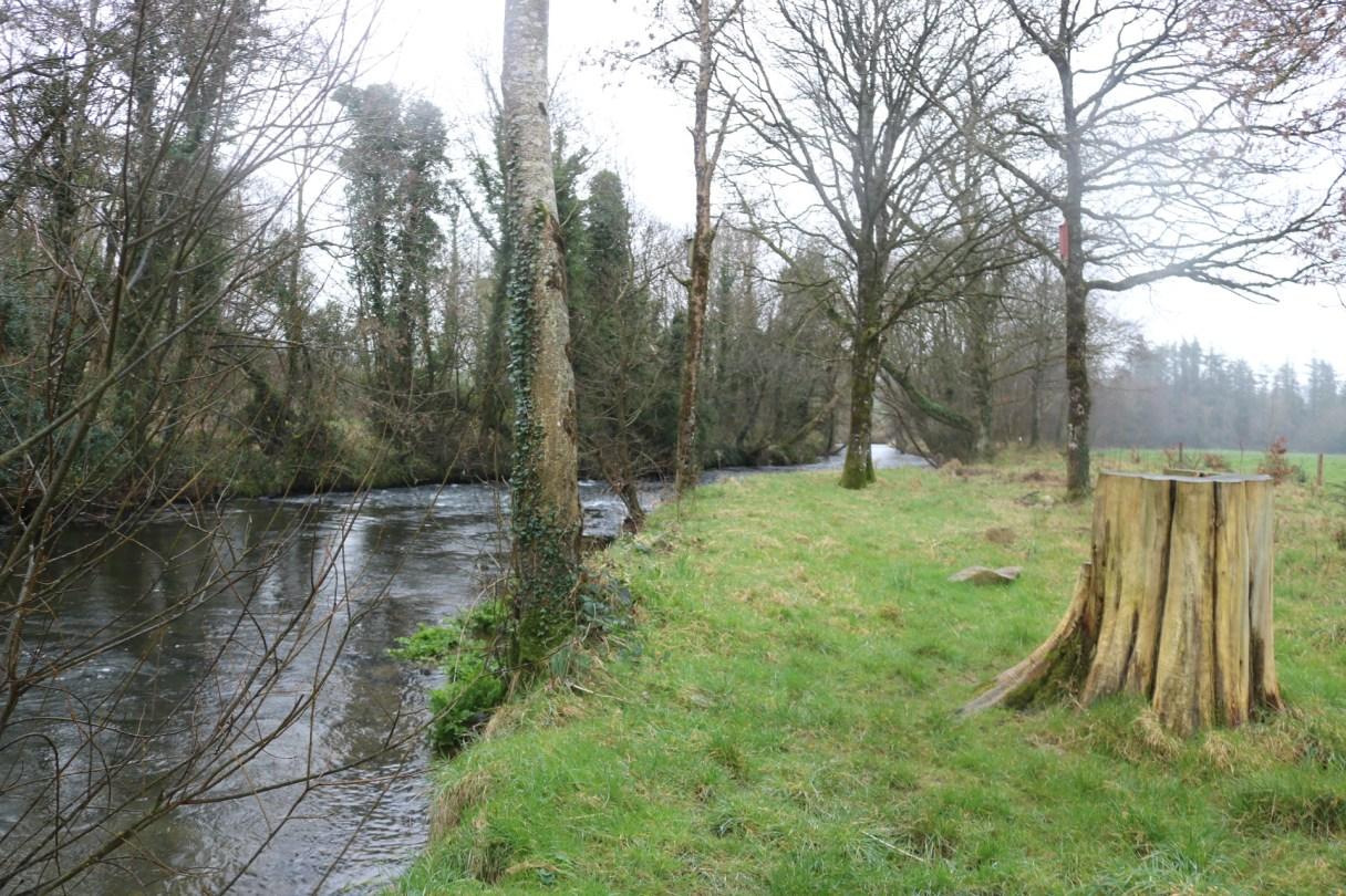 Owenduff River 2017-02-22 (7)