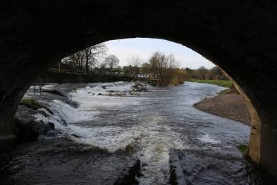 Slaney River Clohamon 2017-03-02 (5)