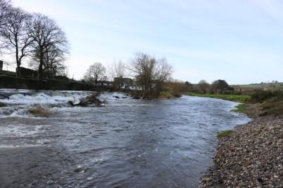 Slaney River Clohamon 2017-03-02 (7)