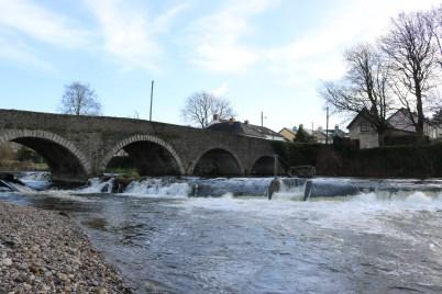 Slaney River Clohamon 2017-03-02 (8)