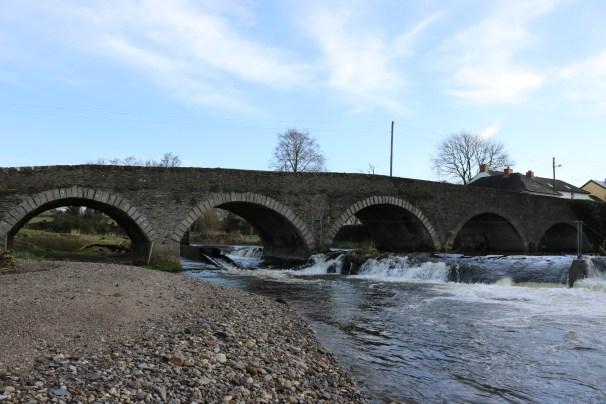 Slaney River Clohamon 2017-03-02 (9)