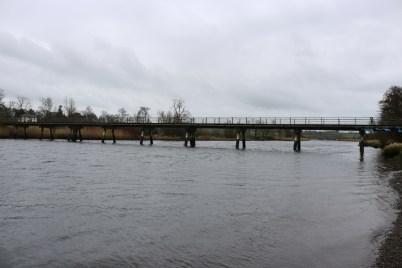 Slaney River, Edermine 2017-03-10 (1)