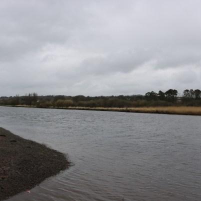 Slaney River, Edermine 2017-03-10 (8)