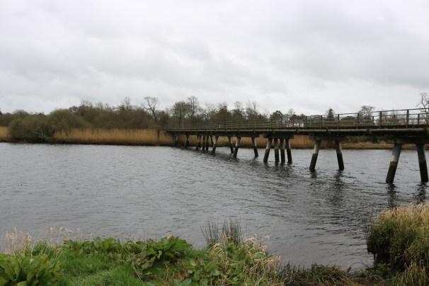 Slaney River, Edermine 2017-03-10 (9)