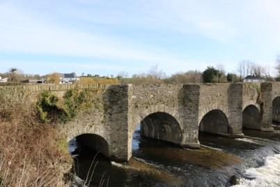 Slaney River ballycarney 2017-03-02 (9)