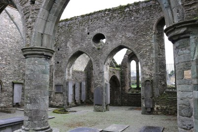 St. Mary's Abbey New Ross 2017-02-20 10.30.52 (33)