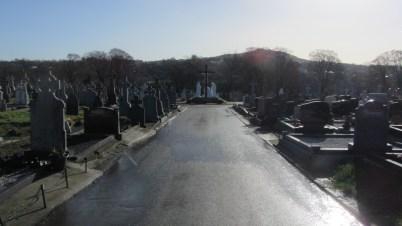 St. Mary's Cemetery Enniscorthy 2014-02-11 11.29.27 (17)