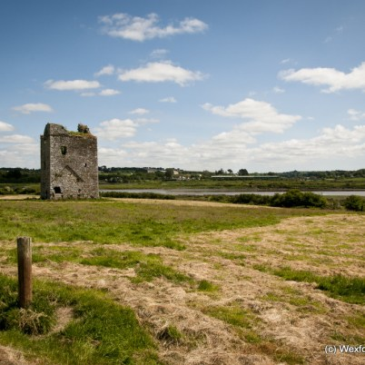 Clonmines Before Conservation 002